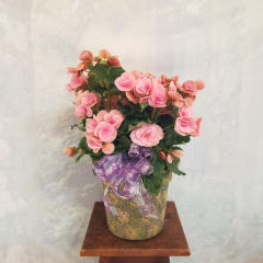 "Beautiful Begonia in a rustic, Tuscan style container with bow for an added touch. Approx. 19"" High"