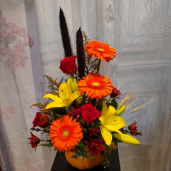 Fall is in the air with this beautiful collection of seasonal flowers and foliage's designed in a ceramic pumpkin container. Flowers and varieties may vary slightly as we source the nicest product direct from our growers. Colors, theme and feel will remain the same..Re-purpose the container for a candy bowl or have us refill it for your Thanksgiving table centerpiece.