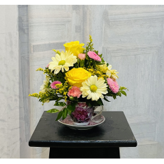 This sweet arrangement comes in a decorative tea cup. Gathered are roses, asters and daisy poms. Who wouldn't love this adorable gift? **Tea cup color and color of flowers may vary depending upon availability**