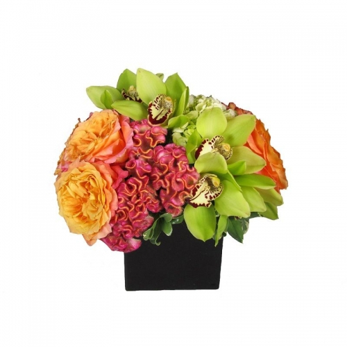 The flower bar larchmont florist ny same day flower delivery calypso mightylinksfo