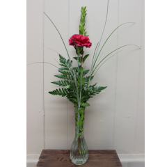 DiBella Flowers & Gifts Las Vegas - Single Carnation Budvase