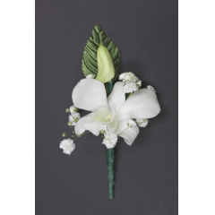 DiBella Flowers & Gifts Las Vegas - Dendorbium Orchid Boutonniere  * Please choose color! Will come as White if no color is selected! **Ribbon loop can be added