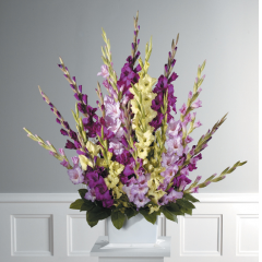 DiBella Flowers & Gifts Las Vegas - Shades of Purple Gladiolus Pedestal Arrangement CTT 51-11  *** Shades may vary ***
