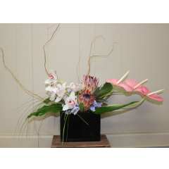 DiBella Flowers & Gifts Las Vegas - Touch of the Tropics Bouquet