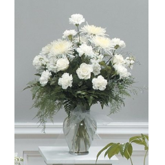 DiBella Flowers & Gifts Las Vegas - White Tribute Vase Arrangement CTT7-12 A beautiful vase of All white blooms including Spider mums, Roses, Carnations and other white flowers.