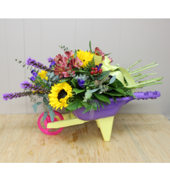 DiBella Flowers & Gifts Las Vegas - Welcome Wagon Celebrate with this adorable wheelbarrow full of fresh flowers! Liatris, Sunflowers, Alstromeria Lilies and more.