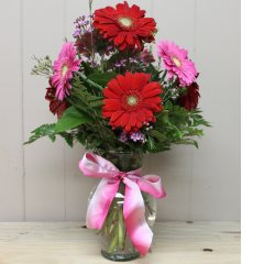 DiBella Flowers & Gifts Las Vegas - Sweetest Love Gerbera Daisies Assortment of pink and red Gerbera Daisies in a vase!