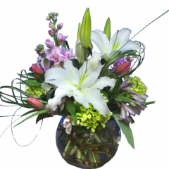 DiBella Flowers & Gifts Las Vegas - With Love A gorgeous mix of white stargazers, purple stock, tulips, alstromeria lilies and green hydrangea in a clear bubble bowl.