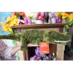 "DiBella Flowers & Gifts Las Vegas - See ya Later Alligator Singing Animal Press his foot and he animatedly sings ""See Ya Later Alligator"""