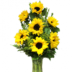 A vase of fresh Sunflowers!
