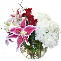 DiBella Flowers & Gifts Las Vegas - True Romance Roses, Stargazer Lilies and Hydrangea in a Curly Willow wrapped bubble bowl.