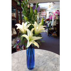 Beautiful blue vase with fresh white stargazers. Simple and elegant.