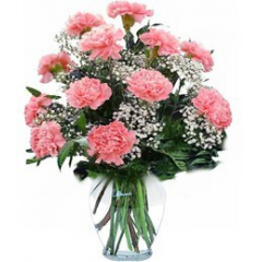 DiBella Flowers & Gifts Las Vegas - One dozen fresh Carnations in a vase with greenery and filler * Fillers are seasonal, may be different than pictured. * Please select color or pink will be chosen. * Excludes Valentine's pricing