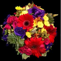 DiBella Flowers & Gifts Las Vegas - Mixed with Succulents