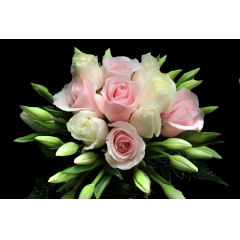 DiBella Flowers & Gifts Las Vegas - The Casey Bouquet! Roses & Tulips