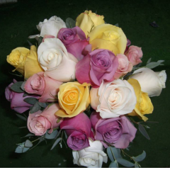 DiBella Flowers & Gifts Las Vegas - Mixed Pastels