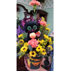 DiBella Flowers & Gifts Las Vegas - Ty beanie black cat and fresh fall blooms in a keepsake resin Halloween container.