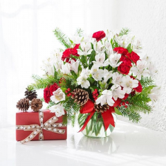 DiBella Flowers & Gifts Las Vegas - Bubble bowl full of fresh white alstromeria lilies and red mini carnations.