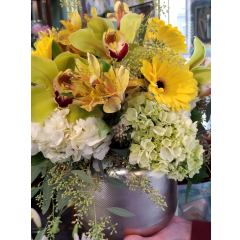 DiBella Flowers & Gifts Las Vegas - Fresh green and white Hydrangea, Gerbera daisies and Cymbidium orchids in a golden art decor keepsake bowl.