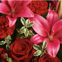 DiBella Flowers & Gifts Las Vegas - Florist Designed Valentine Arrangement Not sure what to send? Let our creative designers choose for you.  *If you have any preferences, please let us know, otherwise we will pick only the freshest product we have on hand to create a design for you in holiday colors.  *Product will vary.