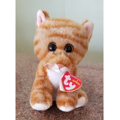 DiBella Flowers & Gifts Las Vegas - Cleo - gold tabby cat