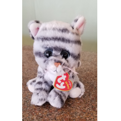 DiBella Flowers & Gifts Las Vegas - Millie - grey tabby cat