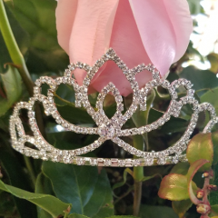DiBella Flowers & Gifts Las Vegas - Add some bling! Diamond studded crown.