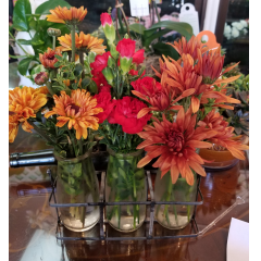 DiBella Flowers & Gifts Las Vegas - Set of three budvases full of fall blooms!