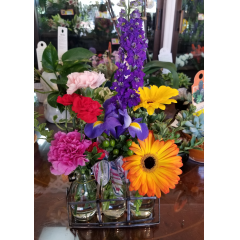 DiBella Flowers & Gifts Las Vegas - Our super cute mini bud vase trio with bright Gerbera Daisies, Carnation, Larkspur and Iris. Perfect for a desktop or kitchen counter.