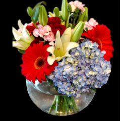 DiBella Flowers & Gifts Las Vegas - Always on My Mind Bubble bowl full of Blue Hydrangea, Bright Red Gerbera Daisies, Delicate White Lilies, Sweet Pink Mini Carnations and Ruby Red Spray Roses.