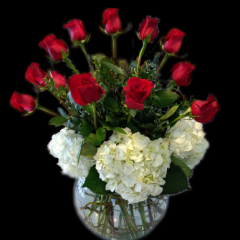 DiBella Flowers & Gifts Las Vegas - A dozen premium long stemmed roses surrounded by white hydrangea in a classic bubble bowl. Classy and elegant! * Valentines pricing may vary