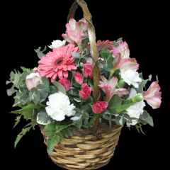 DiBella Flowers & Gifts Las Vegas - Sweet Romance Send this sweet basket full of fresh Gerbera Daisies, Alstromeria lilies, Spray roses and more!