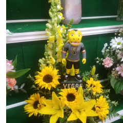 DiBella Flowers & Gifts Las Vegas - We love our Knights and love to show our VGK pride with this awesome addition to our lineup. Arrangement feature Chance our mascot surrounded by golden hued blooms. Perfect for hockey fans!