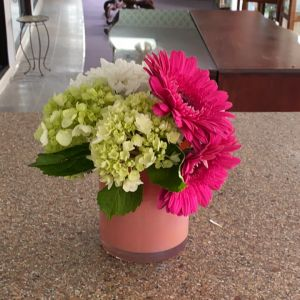 DiBella Flowers & Gifts Las Vegas - Gerbers hydrangea and chrysanthemums in keepsake opalescent container.