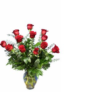 DiBella Flowers & Gifts Las Vegas - One Dozen Long Stemmed Roses *Please Specify Color