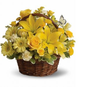DiBella Flowers & Gifts Las Vegas - Yellow Butterfly Basket