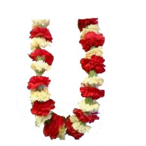 "DiBella Flowers & Gifts Las Vegas - Graduation Lei Choose you school colors and don this beautiful lei of flowers on your big day. * Be sure and add your requested colors (2) in the ""Special Instructions"" section at check out. ** Will come as pictured, in red and white, if no color is chosen *** Bows can be added to match school colors. Please call us at 702-384-1121 with any questions."