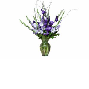 DiBella Flowers & Gifts Las Vegas - The Gladys Bouquet A stunning purple mix of gladiolus in a vase. *** Please note that gladiolus are delivered closed and will be mostly green upon delivery. They will open over the following days and bloom beautifully!