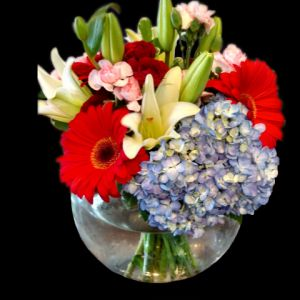 DiBella Flowers & Gifts Las Vegas - Bubble bowl full of Blue Hydrangea, Bright Red Gerbera Daisies, Delicate White Lilies, Sweet Pink Mini Carnations and Ruby Red Spray Roses.