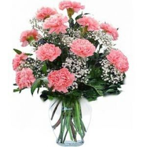 DiBella Flowers & Gifts Las Vegas - One dozen fresh Carnations in a vase with greenery and filler * Fillers are seasonal, may be different than pictured. * Please select color or nicest will be chosen.