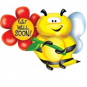 """DiBella Flowers & Gifts Las Vegas - 32""""PKG GET WELL SOON BEE"""