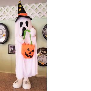 DiBella Flowers & Gifts Las Vegas - White trick or treat ghost
