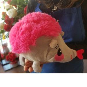 DiBella Flowers & Gifts Las Vegas - Adorable Susie the Hedgehog stuffed animal.