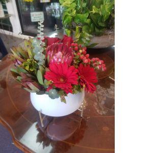 DiBella Flowers & Gifts Las Vegas - Keepsake white pedestal bowl with red Roses, Protea, Safari Sunsets, Gerberas Daisies and more.