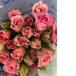 DiBella Flowers & Gifts Las Vegas - Stems of our fresh spray roses on a vase. Fresh and beautiful!
