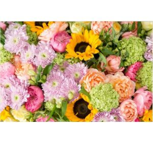 DiBella Flowers & Gifts Las Vegas - Brighten Their Day Bouquet- Send a designers choice mix of long lasting flowers to that someone special to help brighten them up. offered in three price ranges with  *While supplies last *you can request a color scheme in special instructions- we will do our best.