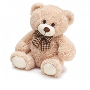 DiBella Flowers & Gifts Las Vegas - Burton Bear 10 inch bear- super soft and adorable