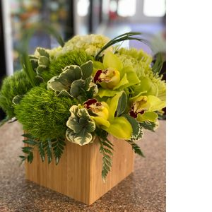 DiBella Flowers & Gifts Las Vegas - Soft greens including hydrangea, orchids and more in bamboo cube.