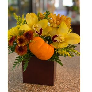 DiBella Flowers & Gifts Las Vegas - Fresh fall tones including orchids and pumpkin in bamboo cube.