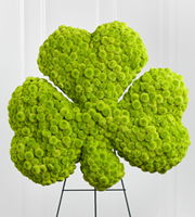 DiBella Flowers & Gifts Las Vegas - The FTD® Forever™ Shamrock Easel is a wonderful way to commemorate the life of your loved one and honor their Celtic heritage. Green button poms form the shape of a shamrock to create an exceptional display of warmth and hope at their final farewell service. Displayed on a wire easel.